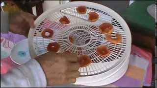 Drying Fuyu Persimmons