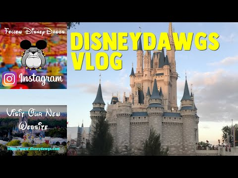 Welcome to DisneyDawgs