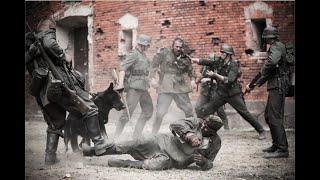 """Захватывающий военный фильм про начало великой отечественной войны """"Брестская Крепость"""" 1941-1945!"""