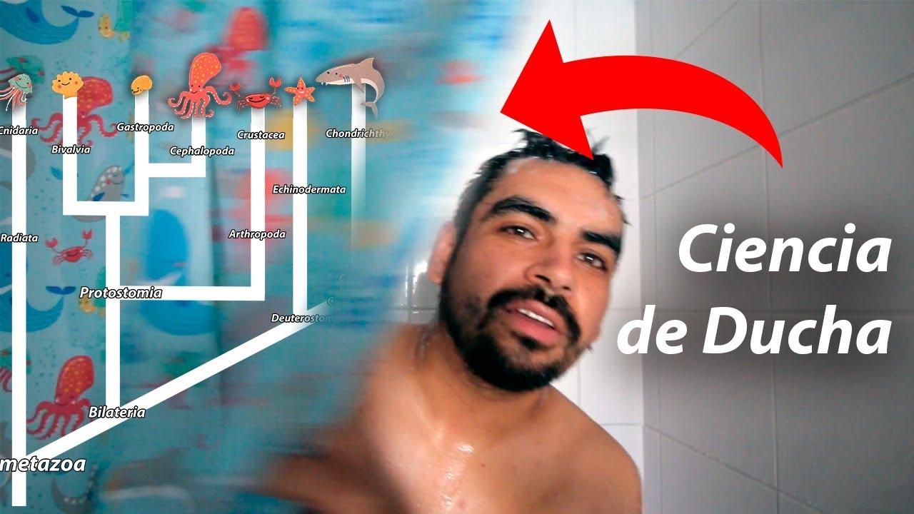 La Ciencia de mi Cortina de Baño #MesDelMar