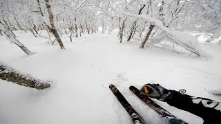 GoPro: Screaming Skier At Mt. Niseko In Japan