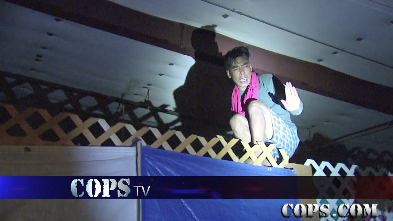 Just Hanging Out Show 2911 Cops Tv Show