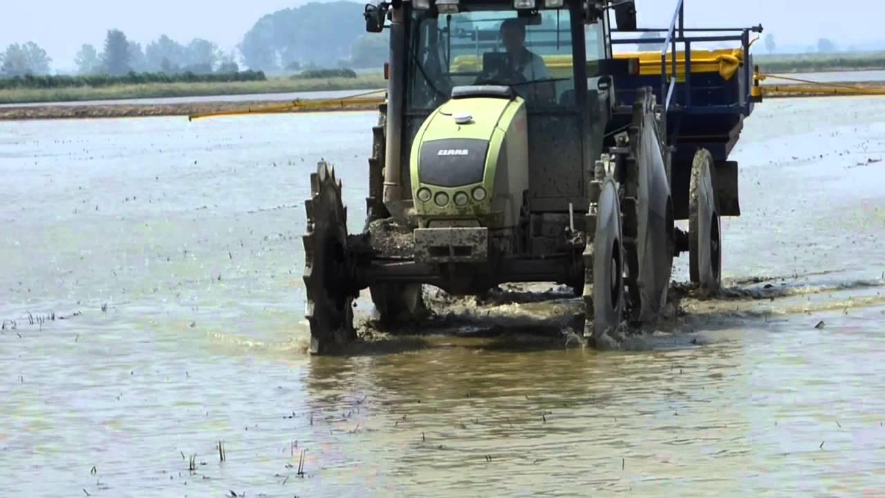 La semina del riso youtube for Semina a spaglio