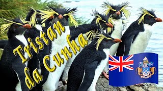 Voyage to Tristan da Cunha