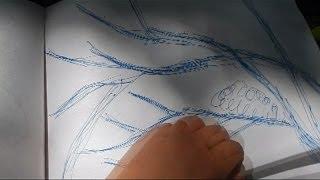 V#19 HSKY Artist Huntington Library Walking & Drawing San Marino CA 2014 Botanical Garden HD