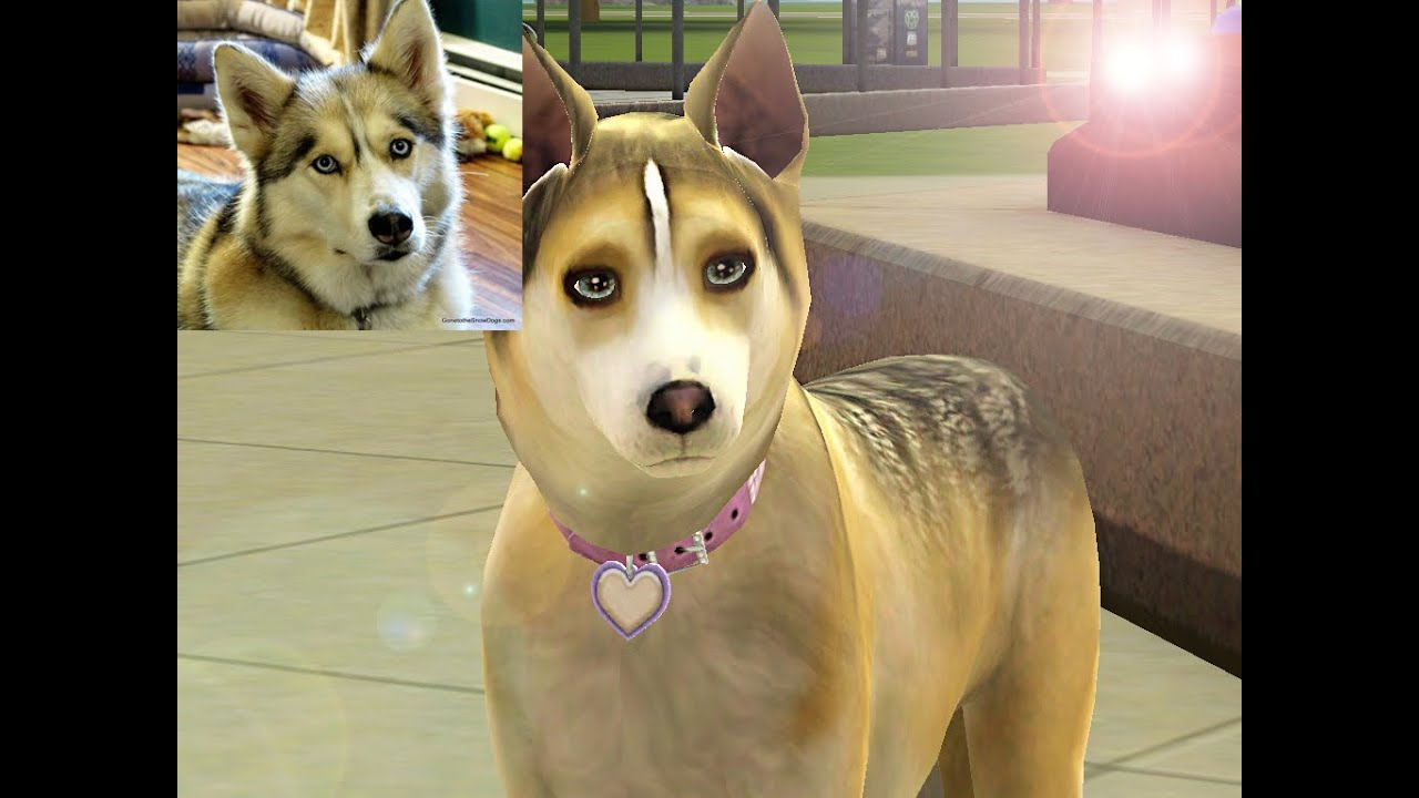 The Sims  Pets And Dogs Download
