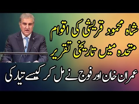 Brilliant And Positive Speech Of Shah Mehmood Qureshi At UN