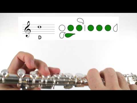 Beginner Flute Lesson 5  First Note!  D