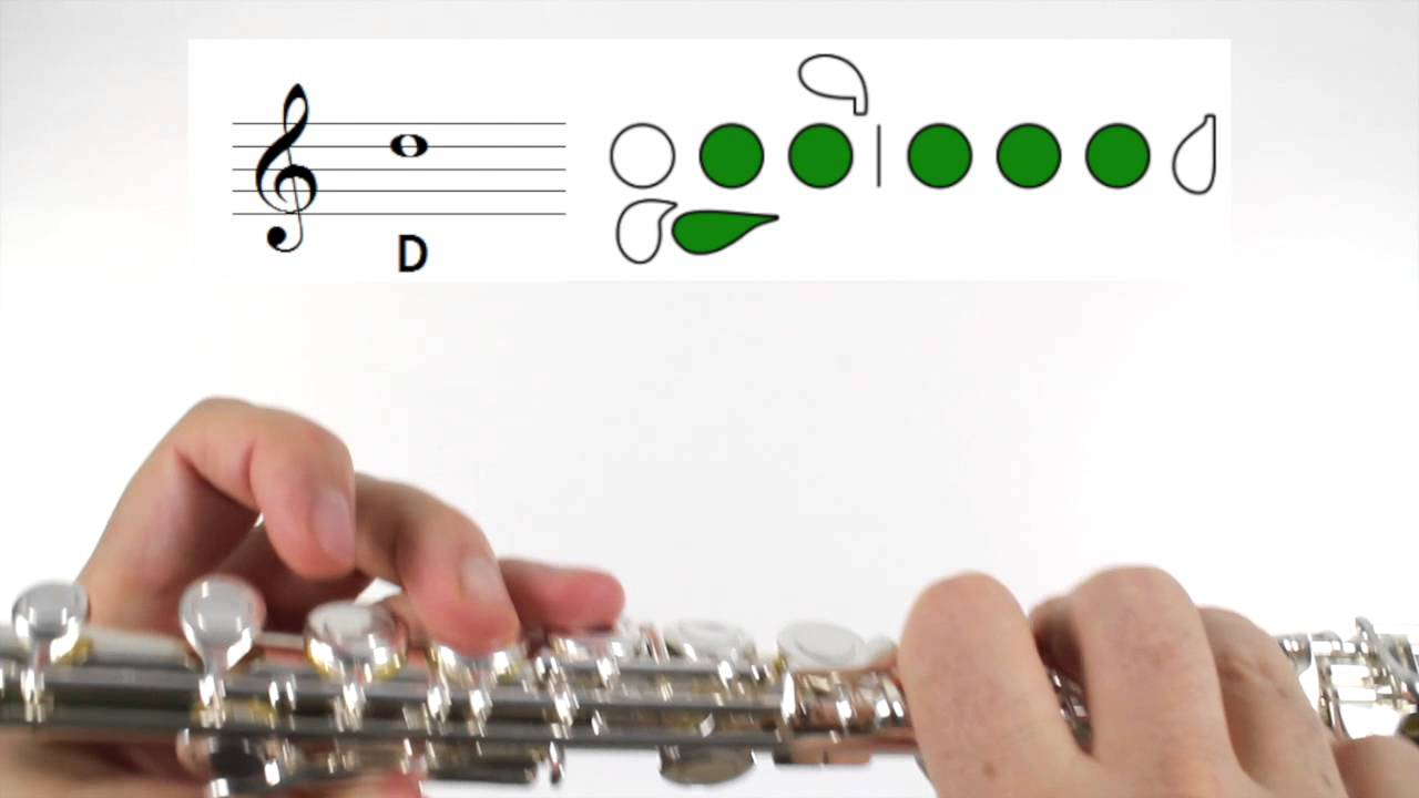 Beginner Flute Lesson 5 - First Note! D