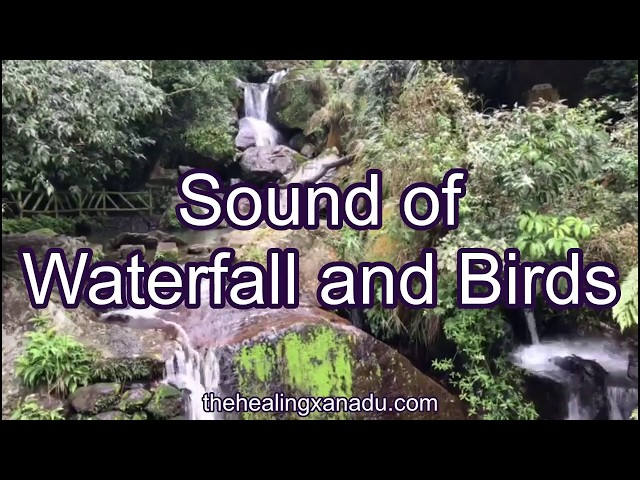 Sound of nature-waterfall-birds-meditation-relaxing sound-calming
