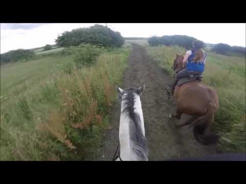 GALLOP WITH ME - Racing 3* Event Horses (Go Pro Headcam)