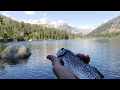 Is This The Best Place To Go Trout Fishing In California?