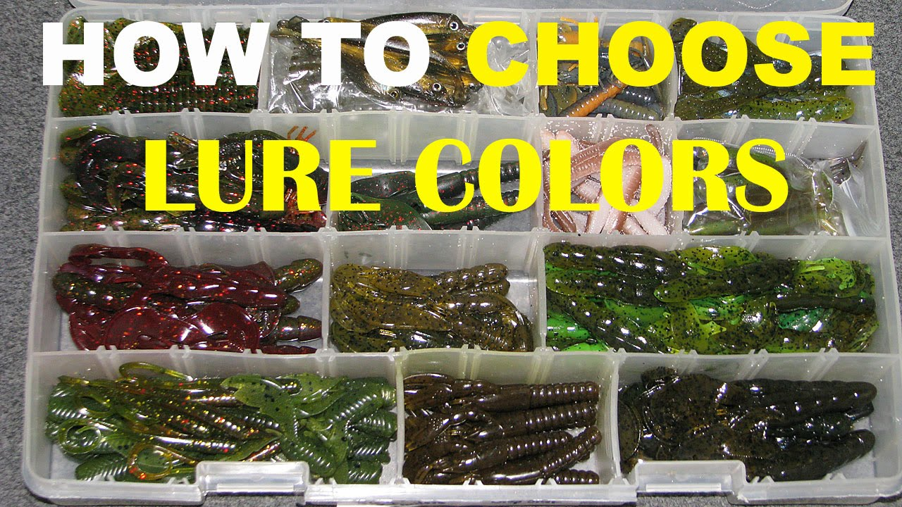 How to choose lure colors bass fishing youtube nvjuhfo Gallery