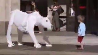 Собака из пакетов