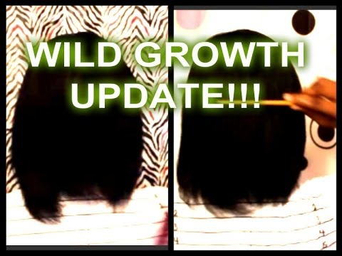 WILD GROWTH HAIR CHALLENGE UPDATE YouTube