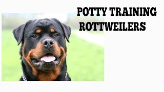 How To Easily Potty Train Rottweilers