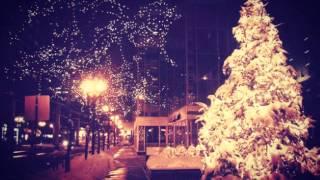 Saukki & Pikkuoravat - Joululaulupotkuri 2