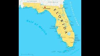 Visiting Florida Wildlife! 4/30/20