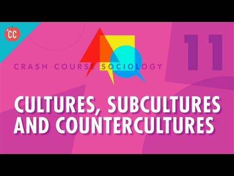 Cultures, Subcultures, and Countercultures: Crash Course Soc