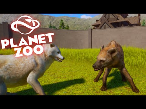 1 SPOTTED HYENA VS 4 ARCTIC WOLVES| Planet Zoo |