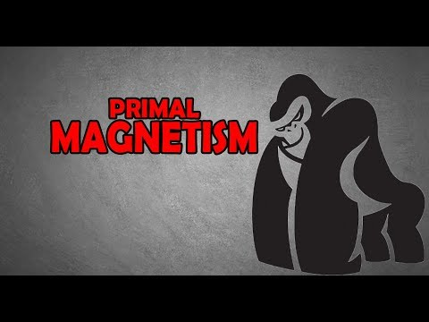 HOW TO BECOME A CHICK MAGNET | PRIMAL POLARITY