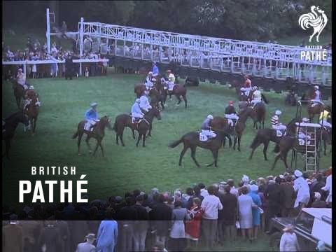 The Derby 1969 (1969)