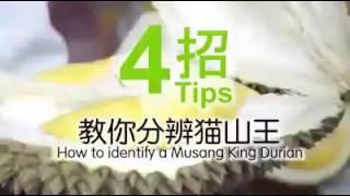 Video How to confirm Durian Musang King download MP3, 3GP, MP4, WEBM, AVI, FLV Juli 2018