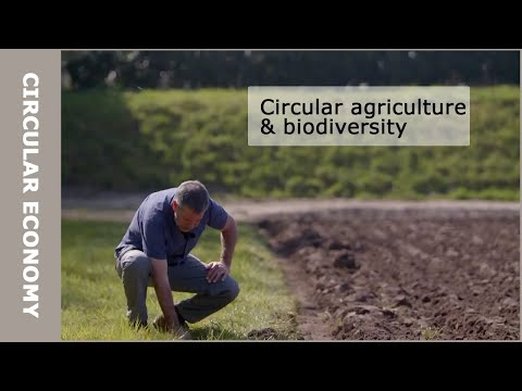 How Does Circular Agriculture Contribute To Biodiversity?