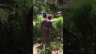 Kenya DFG trip Sept 2018 27