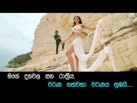 Ria Ria ► Bruce Lee The Fighter 2015 Movie Song Short Version Edited with Sinhala Translation Lyrics