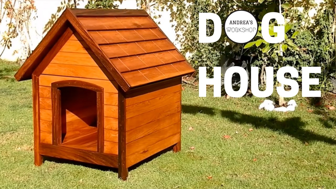 Diy Dog House With Insulation And Removable Roof Youtube