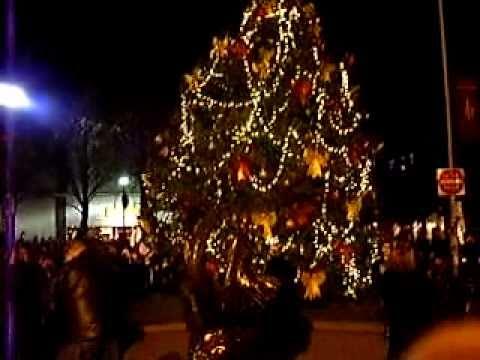 how to watch the boston tree lighting