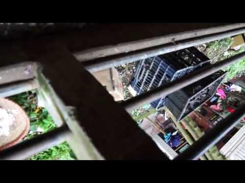 Cameraman Epic Fail - Eiberger VS I-Beam