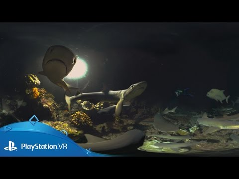 Cocos: Shark Island   Launch Trailer   PlayStation VR