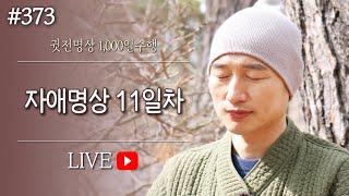 ☯ [실시간-명상방송] 자애명상✚수면명상 11일차▶귓전명상수련(373/422일) KoreaMeditation