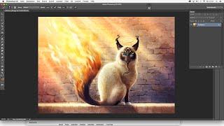 Catamancer: Holy Birman - Speed Painting - Photoshop - Fantasy Cat How to