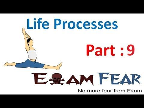 Biology Life Processes part 9 (Nutrition...