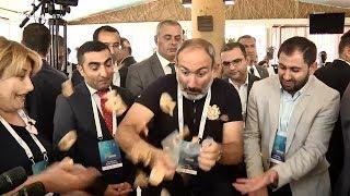 «Քարից ելակ են քամում», «չարը խափանվեց». վարչապետը Ծաղկաձորում շրջում է տաղավարներով
