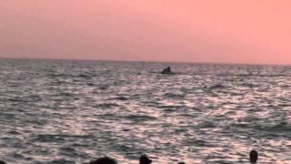 Крым, Саки, база отдыха