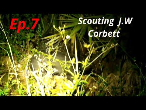 Quick Scout Trip J.W Corbett