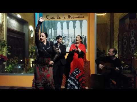"Traditional Flamenco at Centro Cultural Flamenco ""Casa de la Memoria"""