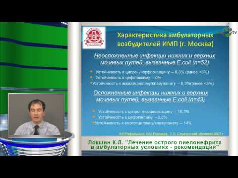 Локшин К.Л. - Лечение острого пиелонефрита