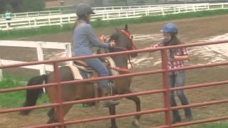 Horse fails&falls 3!
