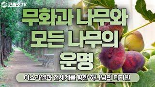 [생방송] 무화과 나무와 모든 나무의 운명 (누가복음 …