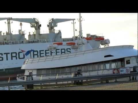 Dutch Exports