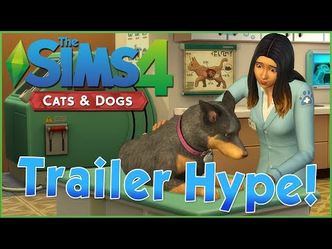 Cooing Over Corgis & More Veterinarian Details!! Sims 4 Pets Trailers Reaction Hype!!