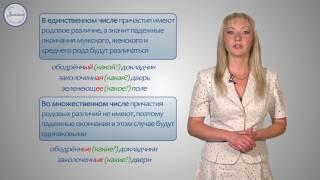 русский язык 7 класс. Склонение причастия и правописание гласных в падежных окончаний