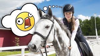 КАКОЙ УЖАС... Я Боюсь Лошадей || VLOG На Конюшне