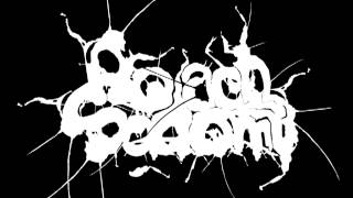 Roach Sodomy - Substance (Pro-Pain Cover)
