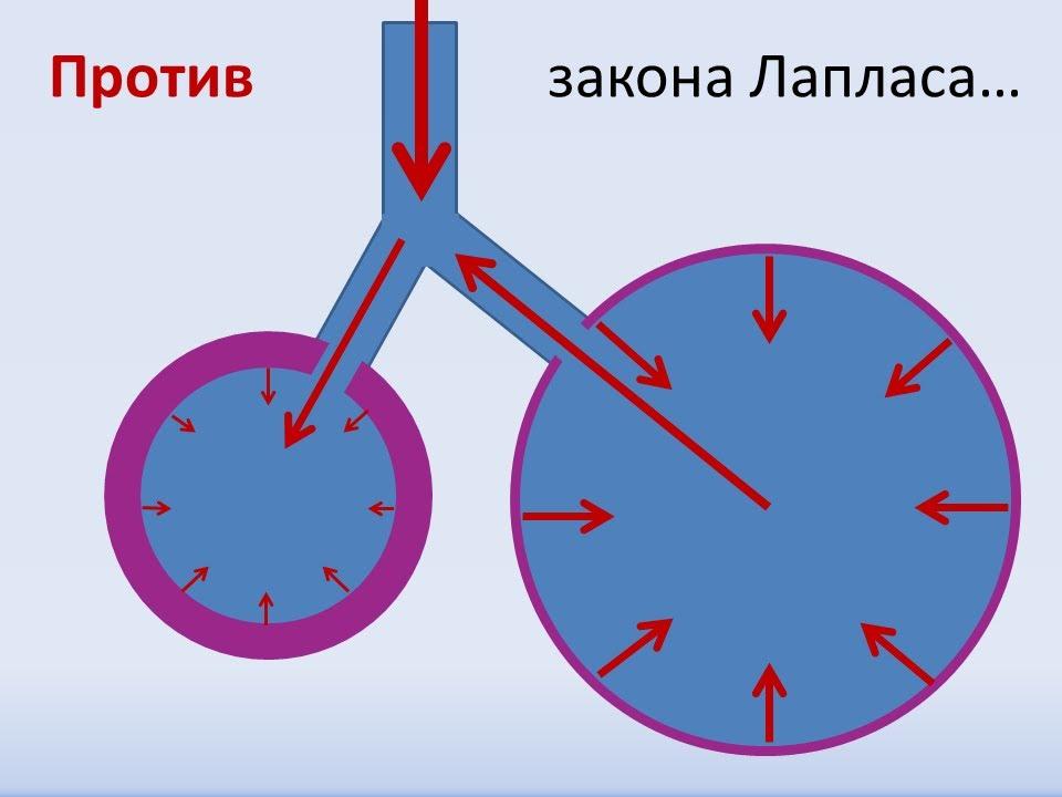 Сурфактант